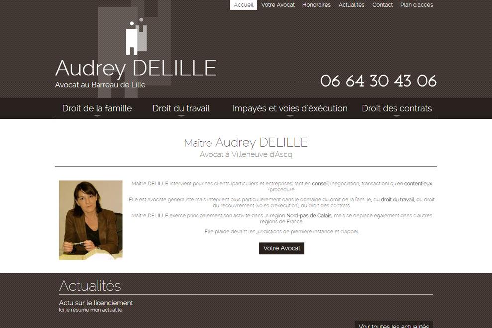 Me Audrey Delille,avocatdroit du travail