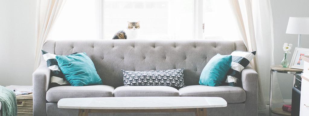 Quels sont les caractéristiques et les avantages de la location meublée non professionnelle ?